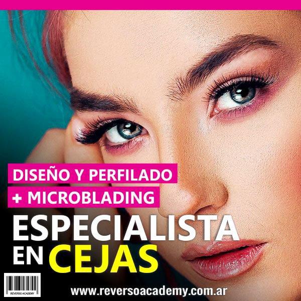 ESPECIALISTA EN CEJAS by Reverso Academy-masterclasses-cursos online-estetica-esteticista