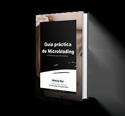 Guia practica de microblading